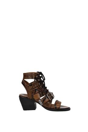 Chloé Sandals Women Leather Brown