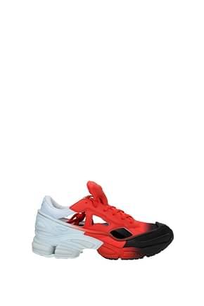 Sneakers Adidas raf simons Uomo