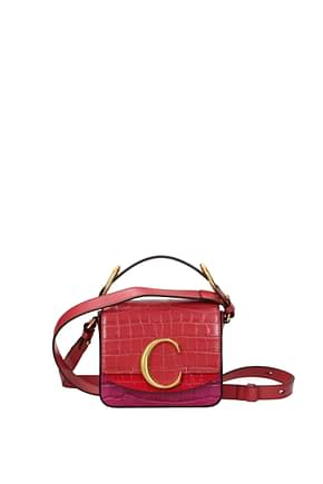 Chloé Handbags Women Leather Multicolor