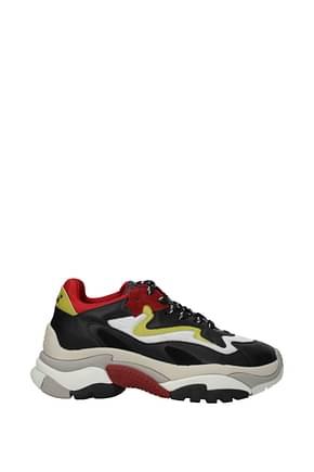 Sneakers Ash addict Donna