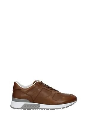 Sneakers Tod's Men