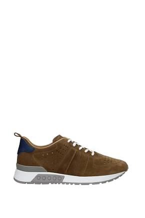 Tod's Sneakers Uomo Camoscio Marrone